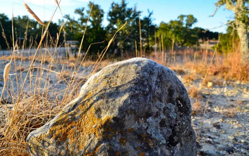 Focus on a rock with an open pasture in the background