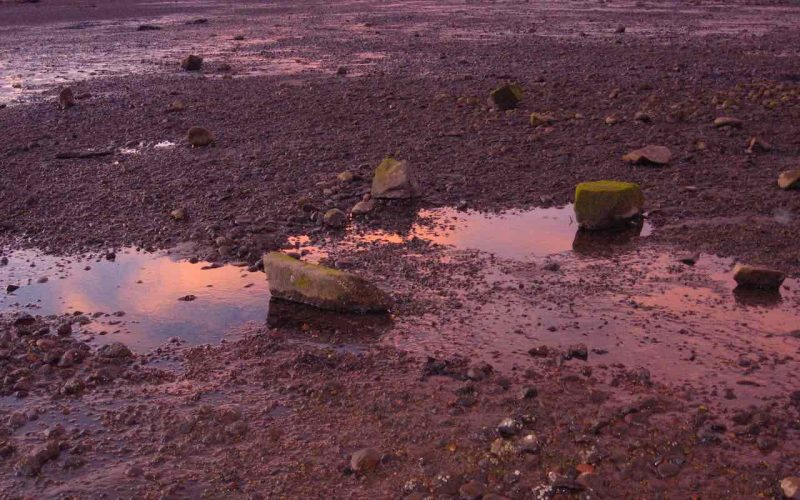 Sunset. A gravel lot with a few large rocks and a puddle. The whole picture has a pink hue due to the sunset.
