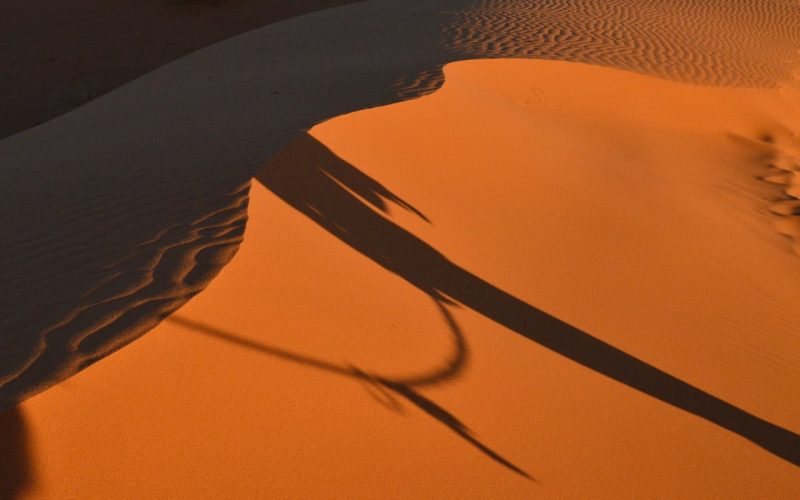 Aerial view of a dune in the desert. The sand is in shadow on the left side of the dune ridge and in the sun on the right side